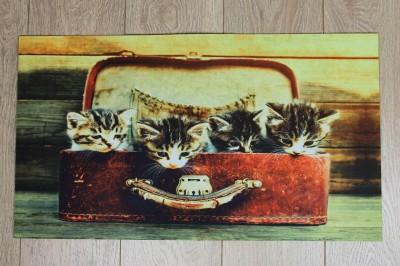 Diğer - Kedi Fotoğraflı Kapı Önü Dikdörtgen Paspas 70x39cm