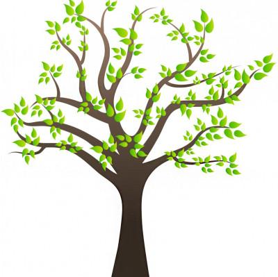 Ağaç ve Yapraklar Duvar Sticker 50cm - Thumbnail