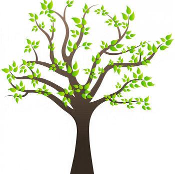 Ağaç ve Yapraklar Duvar Sticker 50cm