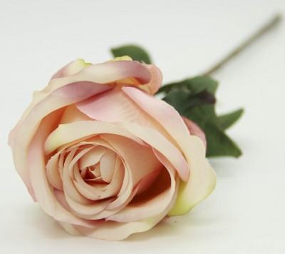 Diğer - Dekoratif Yapay Çiçek Uzun Tek Gül Dalı Yavruağzı