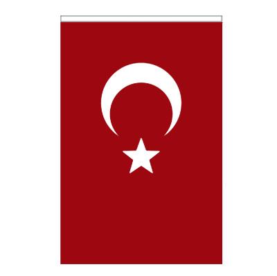 Diğer - Dikişli Kumaş Türk Bayrağı 30x45cm