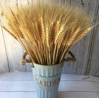 Diğer - Doğal Buğday Başağı Süsleme Demeti Sade