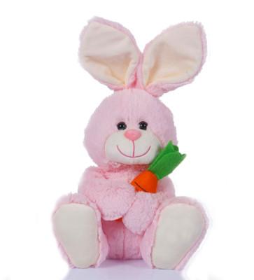 Diğer - Havuç ve Tavşan Peluş Oyuncak 28cm